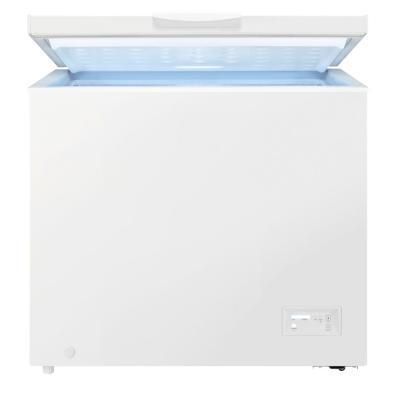 Congelador Zanussi ZCAN20FW1 F