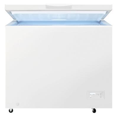 Congelador Zanussi ZCAN26FW1 F